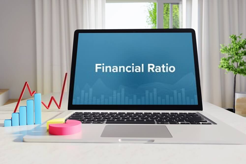 Details Of Financial Ratio Assignment